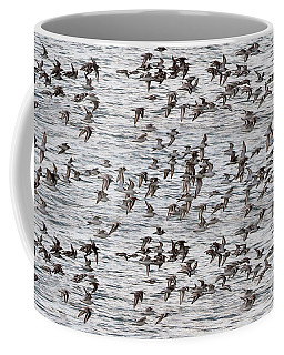 Coffee Mug featuring the photograph Sandpipers In Flight by Dan Friend