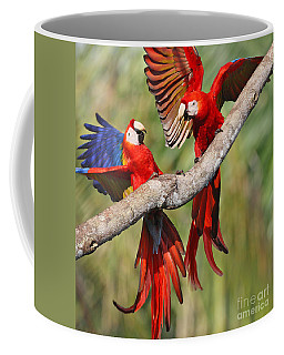 Scarlet Macaws Coffee Mug