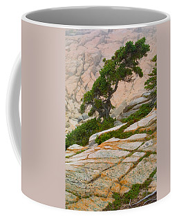 Schoodic Cliffs Coffee Mug by Brent L Ander
