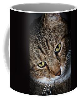 Scooter Coffee Mug by Doug Long