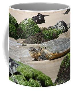 Sea Turtle 1 Coffee Mug