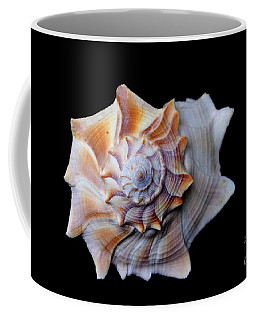 Coffee Mug featuring the photograph Seashell 1 by Deniece Platt