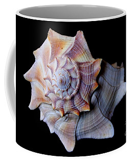 Coffee Mug featuring the photograph Seashell 5 by Deniece Platt