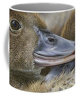 Secrets Coffee Mug by Anne Rodkin