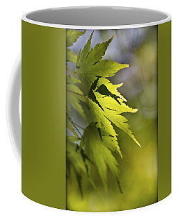 Coffee Mug featuring the photograph Shades Of Green And Gold. by Clare Bambers