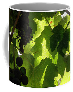 Coffee Mug featuring the photograph Shadow Dancing Grapes by Lainie Wrightson