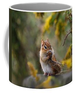 Shy Little Chipmunk Coffee Mug