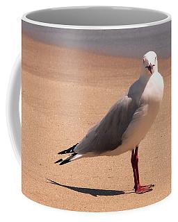 Silver Gull - A Portrait Coffee Mug