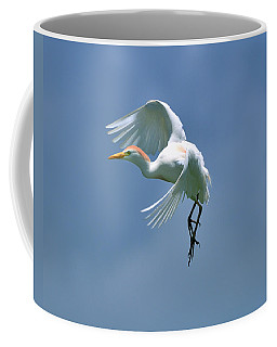 Sky Dancing Coffee Mug