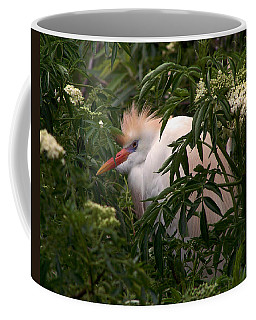 Sleepy Egret In Elderberry Coffee Mug