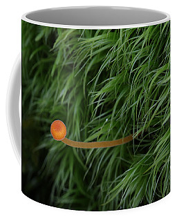 Small Orange Mushroom In Moss Coffee Mug
