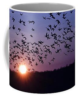 Snow Geese Migrating Coffee Mug