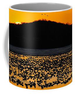 Snow Geese Sunrise Coffee Mug