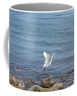 Coffee Mug featuring the photograph Snowy Egret by Marilyn Wilson