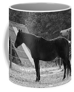 Coffee Mug featuring the photograph Snowy Horse by Angelique Olin