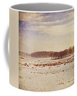 Snowy Landscape Coffee Mug by Lyn Randle