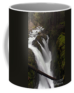 Sol Duc Falls Coffee Mug by Mike Reid