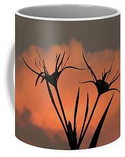 Spider Lilies At Sunset Coffee Mug
