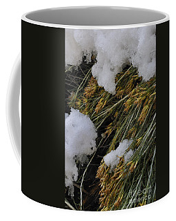 Coffee Mug featuring the photograph Spring Arrives by Ron Cline