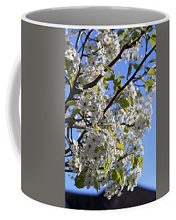 Coffee Mug featuring the photograph Spring Blooms by Kay Novy