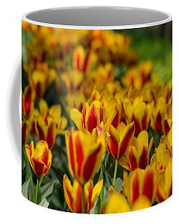 Spring Mood Coffee Mug