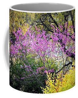 Spring Trees In San Antonio Coffee Mug