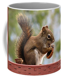 Squirrel And His Walnut Coffee Mug