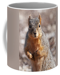 Coffee Mug featuring the photograph Squirrel by Art Whitton