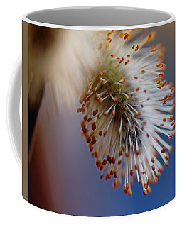 Starburst Coffee Mug by Susan Capuano