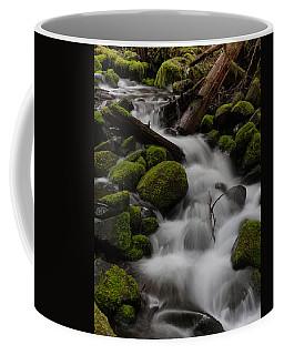 Stepping Stones Coffee Mug by Mike Reid