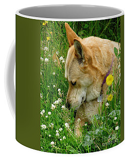 Stop And Smell The Clover Coffee Mug