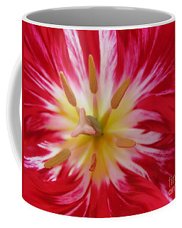 Striped Flaming Tulips. Hot Pink Rio Carnival Coffee Mug