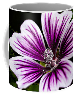 Stripped Blossom Coffee Mug by Larry Carr