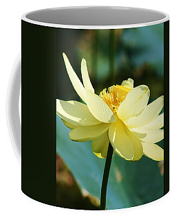 Stunning Water Lily Coffee Mug by Bruce Bley