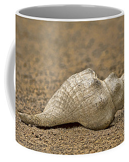 Summertime Coffee Mug by Anne Rodkin