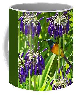 Coffee Mug featuring the photograph Sun Bird by Lynn Bolt