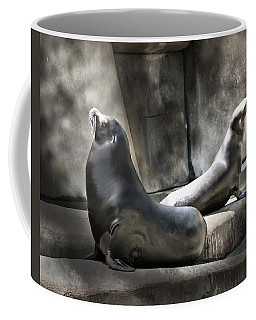 Coffee Mug featuring the photograph Sunbathing Seals by Mary Almond