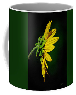 Coffee Mug featuring the photograph Sunflower In Profile by Vicki Pelham