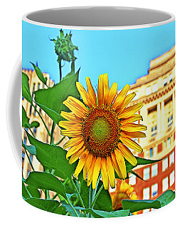 Coffee Mug featuring the photograph Sunflower In The City by Alice Gipson