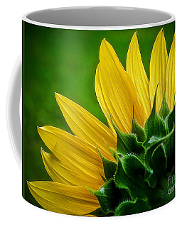 Sunflower Coffee Mug by Larry Carr