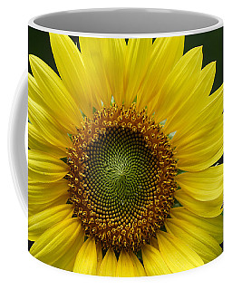 Sunflower With Insect Coffee Mug