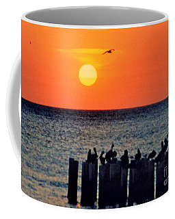 Coffee Mug featuring the photograph Sunset In Florida by Lydia Holly