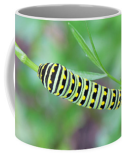 Swallowtail Caterpillar On Parsley Coffee Mug