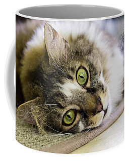 Tabby Cat Looking At Camera Coffee Mug