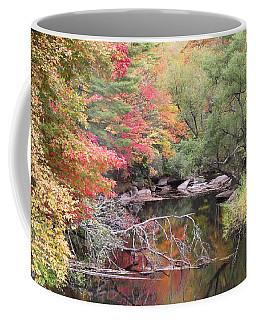 Tanasee Creek In The Fall Coffee Mug