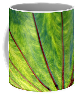 Taro 1 Coffee Mug