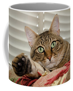 The Cat With Green Eyes Coffee Mug