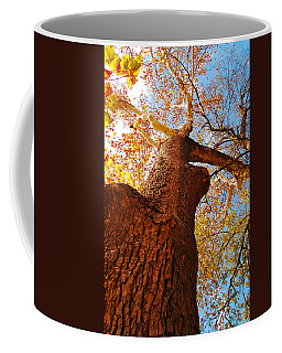 Coffee Mug featuring the photograph The Deer  Autumn Leaves Tree by Peggy Franz