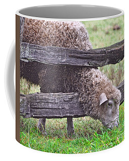 Coffee Mug featuring the photograph The Grass...on The Other Side by Lydia Holly