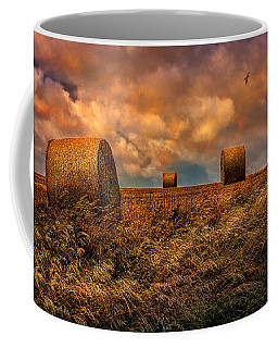 Coffee Mug featuring the photograph The Hayfield by Chris Lord